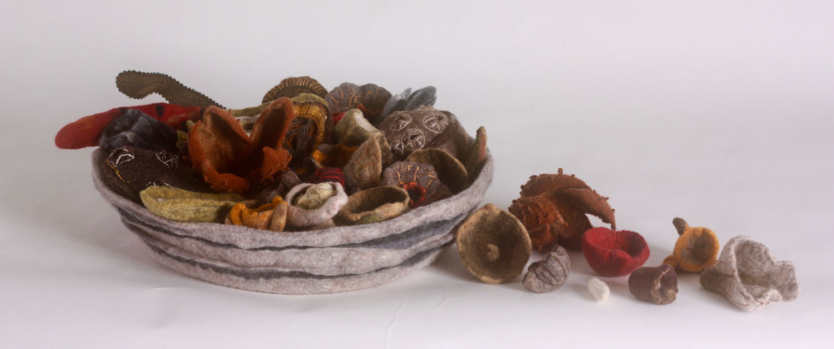 Denise Lithgow Seed Pods 16x40x40cm